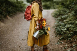 The Lioness within. Christian blog post for Christian women